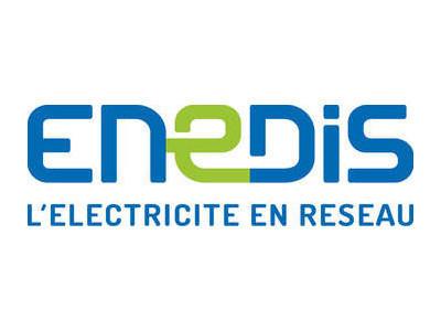 <i>ENEDIS</i>